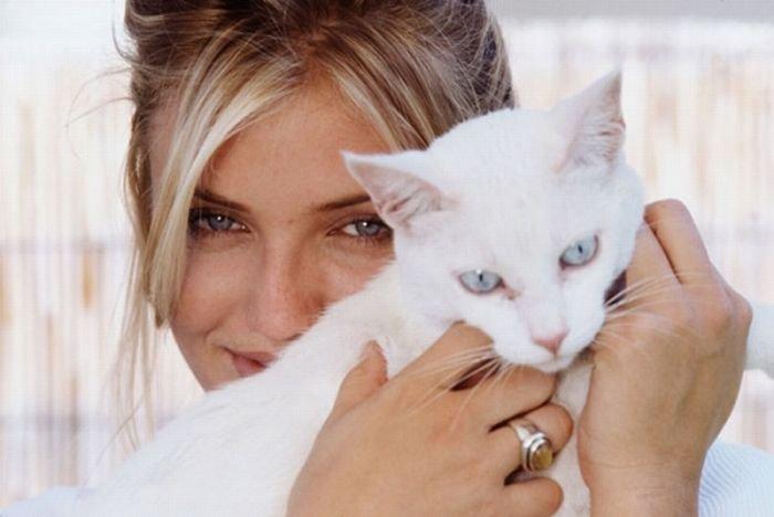 Сексуальная женщина кошка - Архив классных девченок