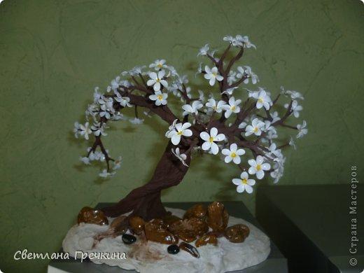 Мастер-класс Мой первый МК Дерево *Весеннее Настроение* Гипс Краска Проволока фото 8