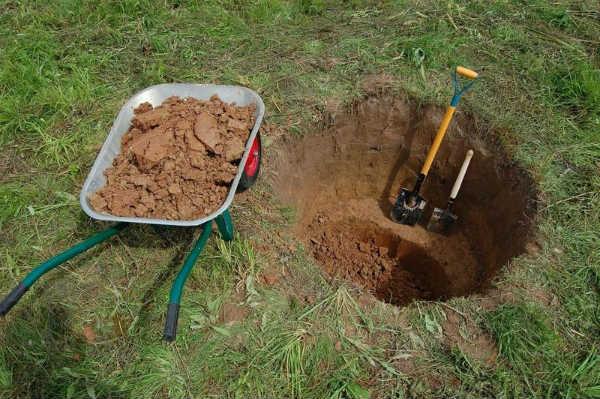 Как найти воду На участке для Колодца или Скважины