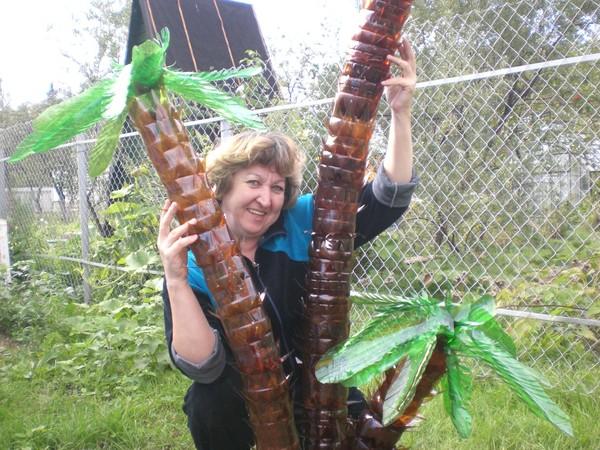 Как сделать пальма своими руками из пластиковых бутылок