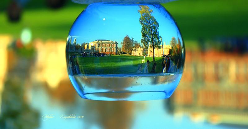 Отражение в бокале с водой. Фото Царицыно