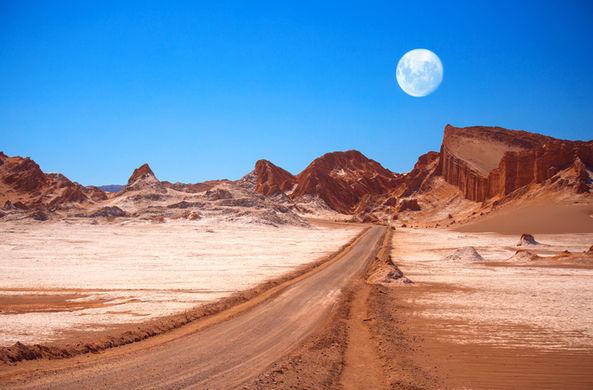 Обитатели самой сухой пустыни помогают понять, как может выглядеть жизнь на Марсе