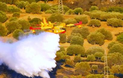 Жертвами лесных пожаров в Италии стали еще три человека