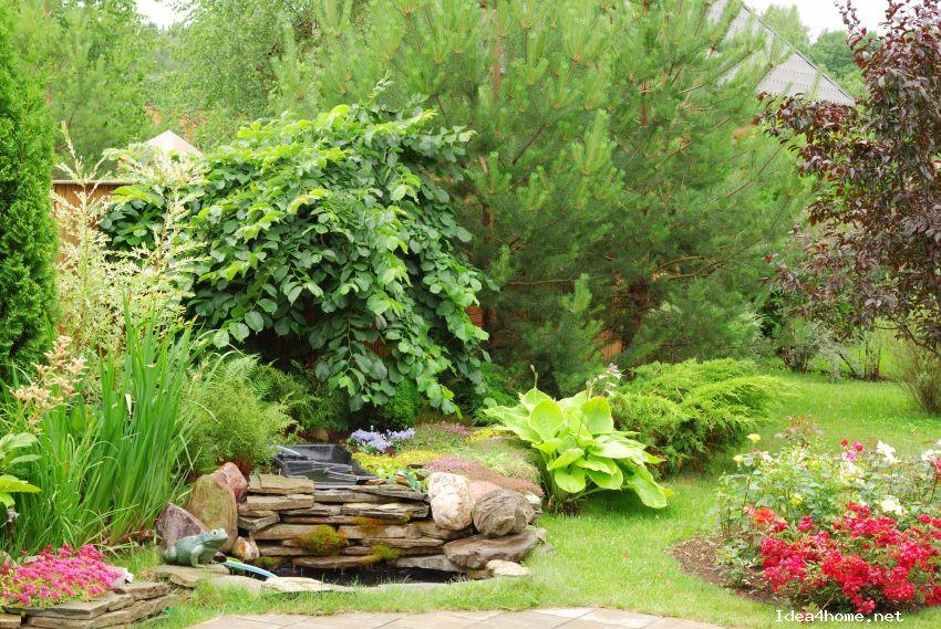 4ca576c461979 Красивые идеи для дачи.