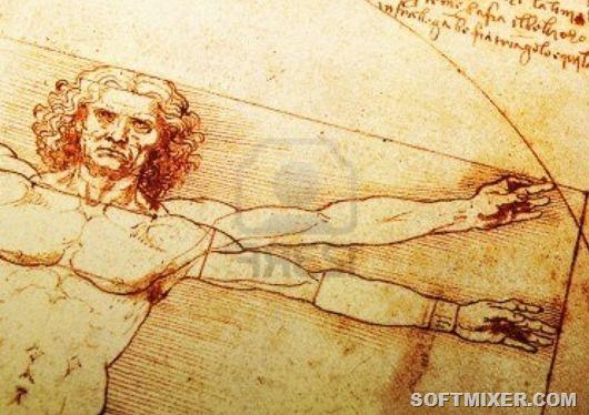 Важные части тела, о которых мы ничего не знаем