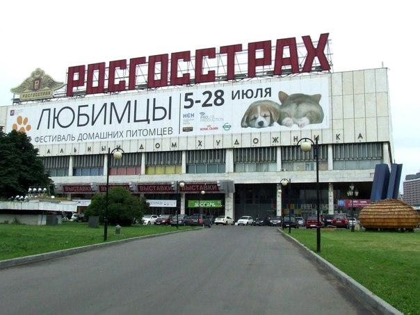 Если ваш питомец дрессированный и вы живете в Москве!