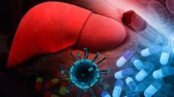 Ученые Сколкова создали лекарство от неизлечимой болезни
