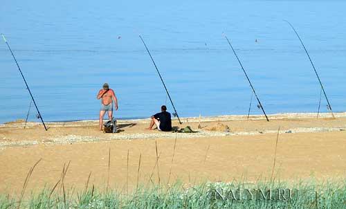 рыбалка на калкана в черном море