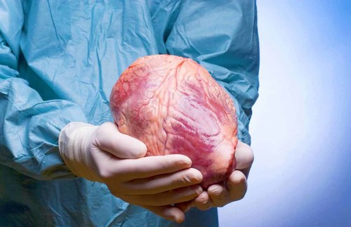 На трансплантацию органов согласен. Новая отметка в паспорте