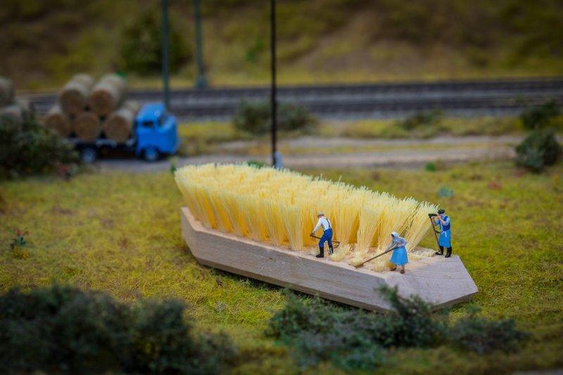 """""""Урожай"""" инсталляции, искусство, креатив, миниатюры, необычно, творчество, фото, фотограф"""