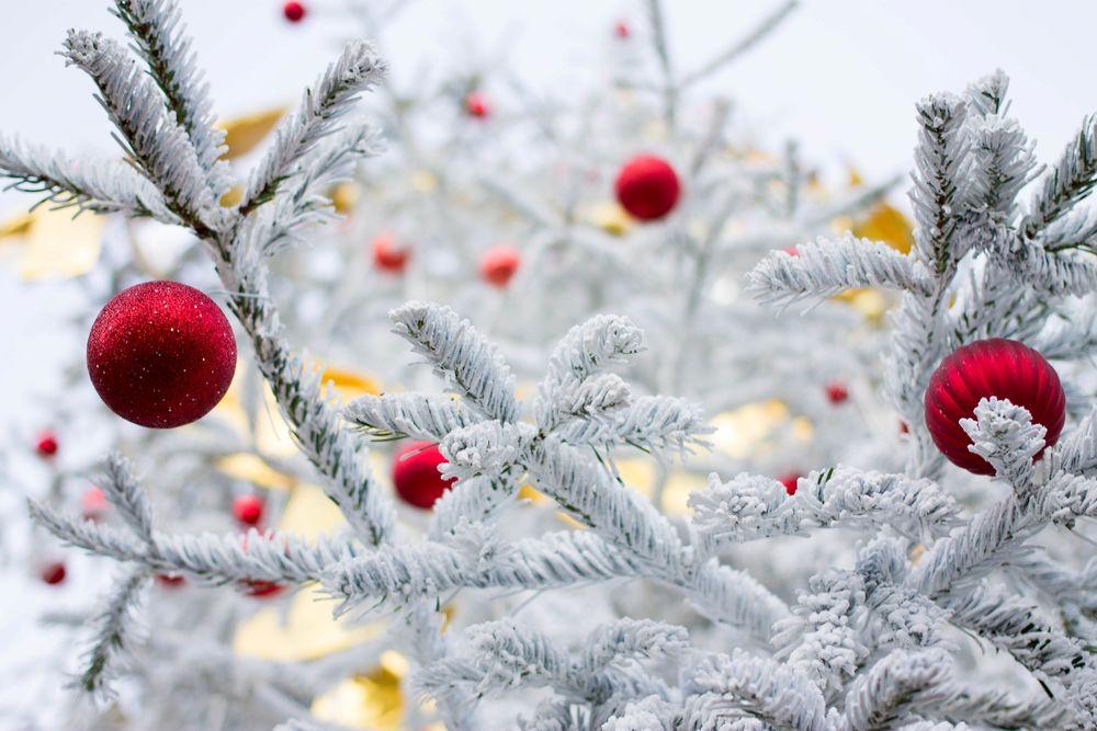 Тематические пятницы декабря