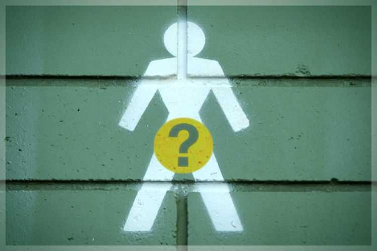 Ученые: женская верность зависит от размера мужских яичек..