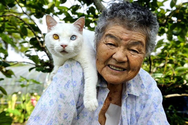 Японская бабушка Миса и её кот Фукумара