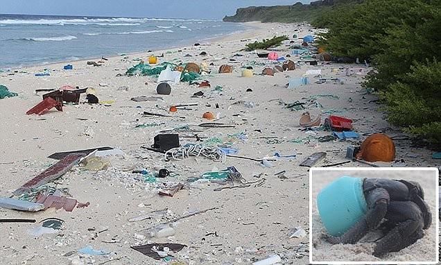 Райский остров превратился в самое загрязненное место на планете