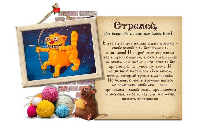 Гороскоп: «Каким бы вы были котиком?» гороскоп, кот, позитив