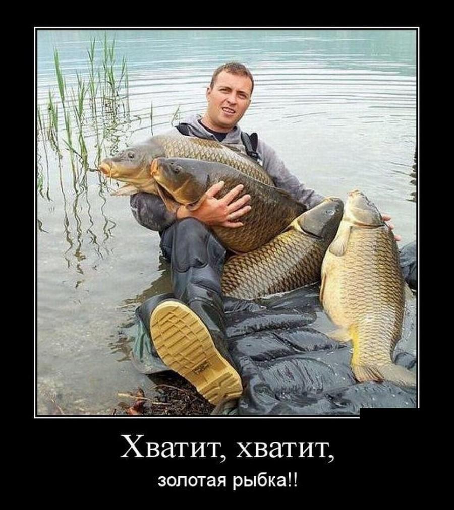 Учеными открыт новый вид рыб - рыба-падла. Не ловится и все тут...