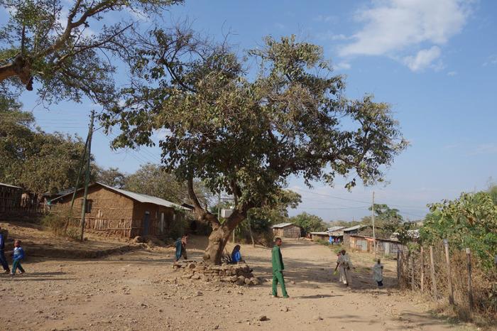 Утопия по-африкански: Эфиопская деревня, где феминизм является законом