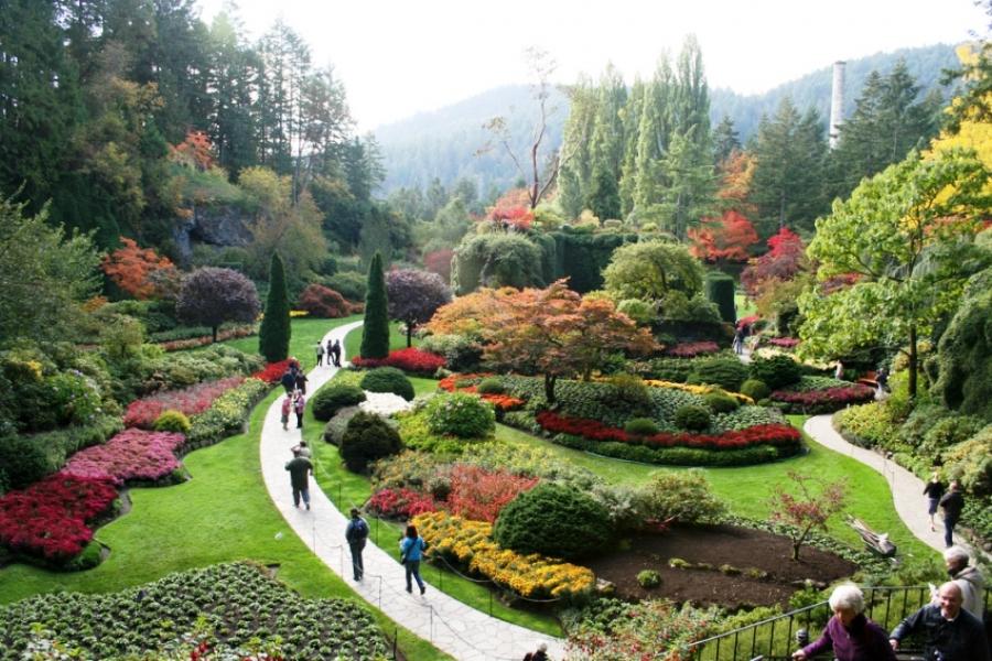 «Затонувший сад» — пышный ботанический сад ниже уровня моря