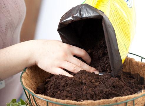 Как улучшить готовый грунт для комнатных растений