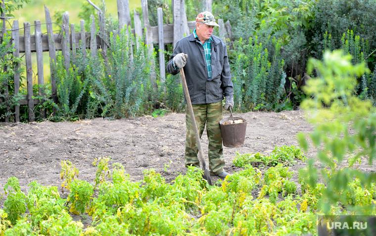 В Сети распространяют заявление единороссов о новом налоге на огород
