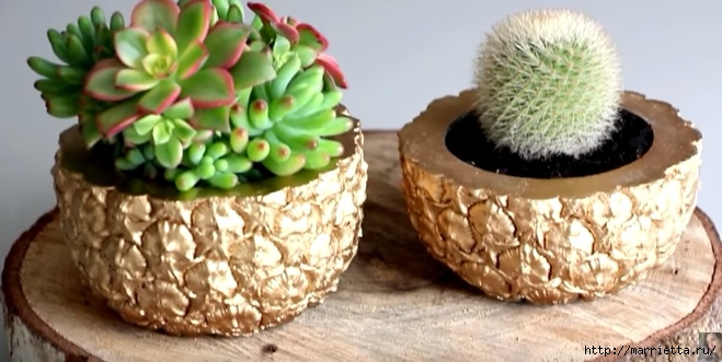 Креативная идея — кашпо из ананаса. Красиво и необычно!