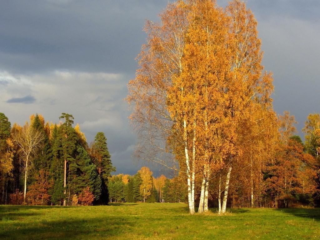 Приметы по погоде на Покров Пресвятой Богородицы 14 октября