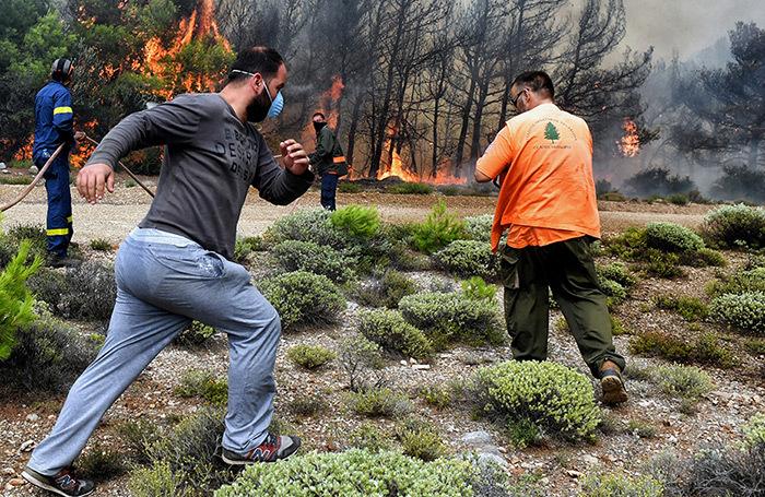 В Греции возросло число жертв пожаров