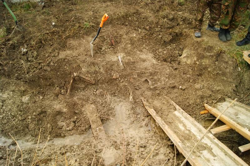 В Новороссийске начались раскопки массового захоронения времён ВОВ