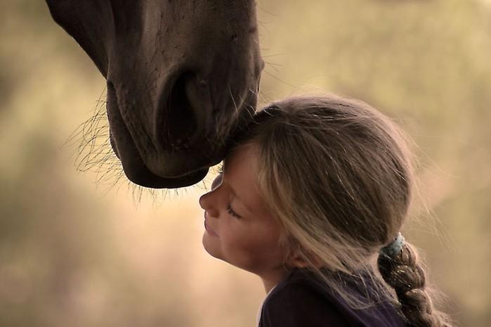 История как лошадь помогла немой девочке