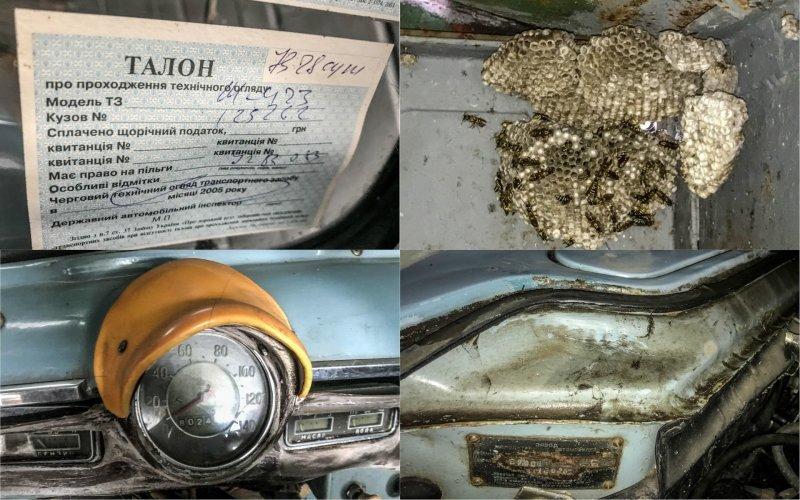 На талоне техосмотра автомобиль записан как Москвич-423. В гараже было полно действующих осиных гнезд, поэтому фотографировать нужно было предельно аккуратно Москвич-430, авто, азлк, москвич, находка, олдтаймер, ретро авто, фургон