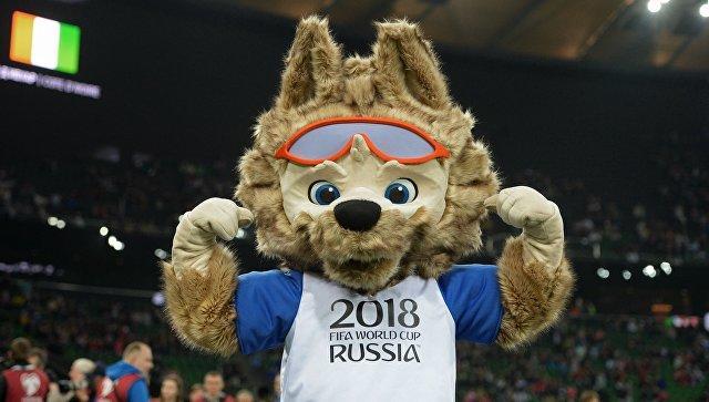ЧМ-2018: в Петербурге появятся «футбольные» духи и проездной с изображением Забиваки