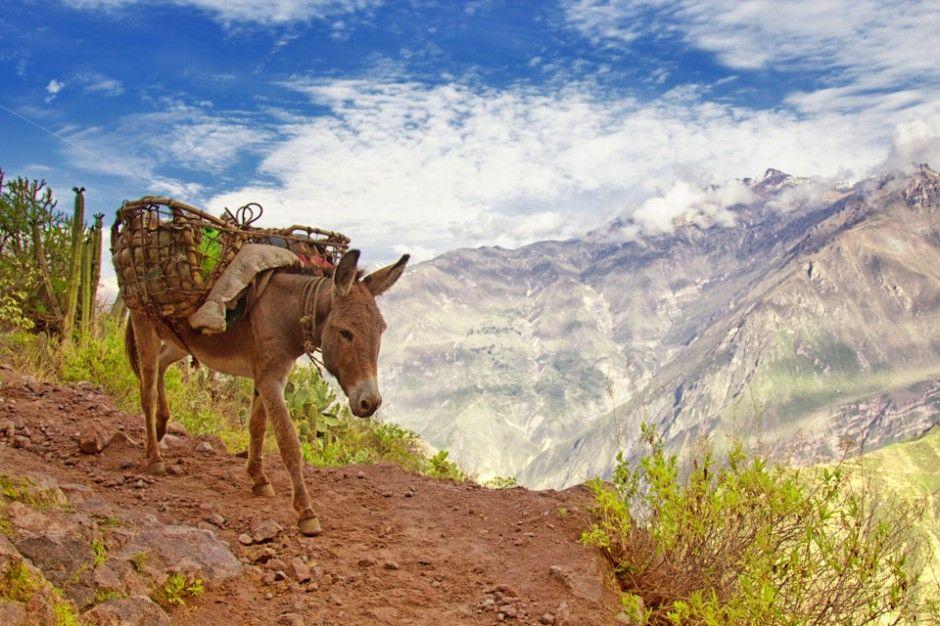 752 20 самых красивых каньонов мира