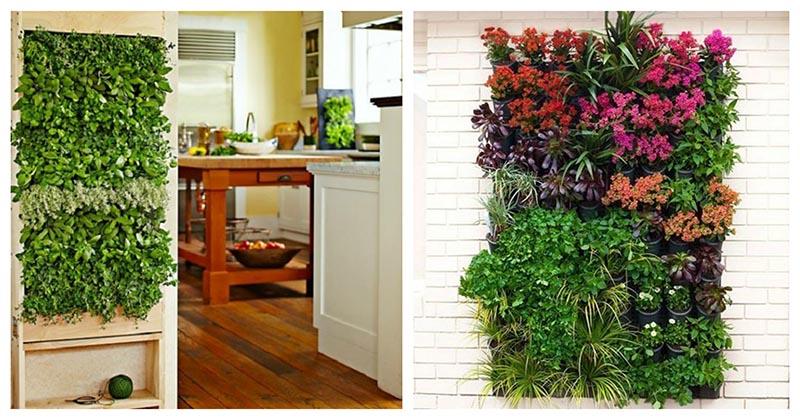 Привлекательные и яркие идеи вертикального сада