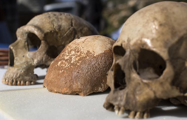 Предки современного человека жили на 150 тысяч лет раньше, чем предполагалось
