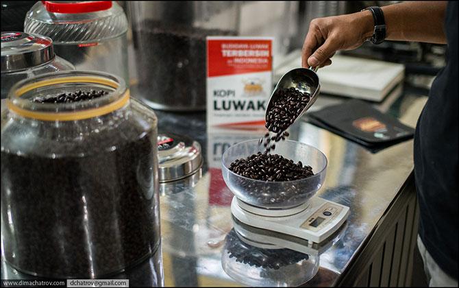 Про самый дорогой в мире кофе