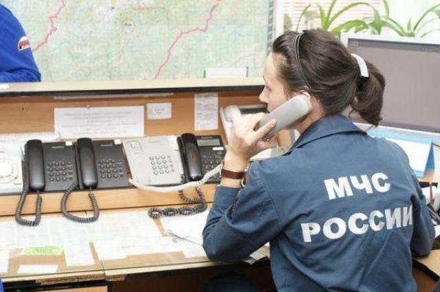 МЧС России до конца года упразднит все региональные центры
