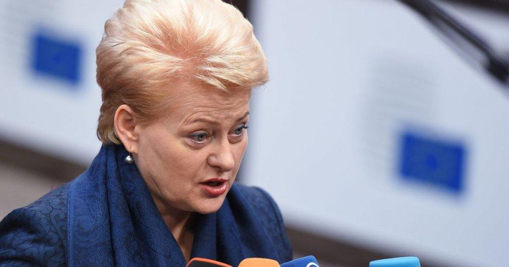 Европа ошеломила Литву своими заявлениями: Грибаускайте в тупике - Россия теперь друг