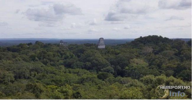 Цивилизация майя оказалась намного сложнее, чем мы думали