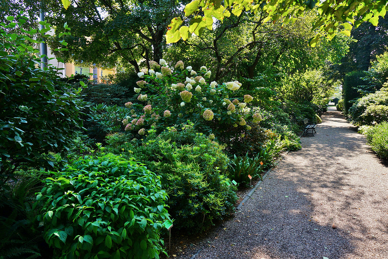 Ботанический сад Университета Броцлава, Польша