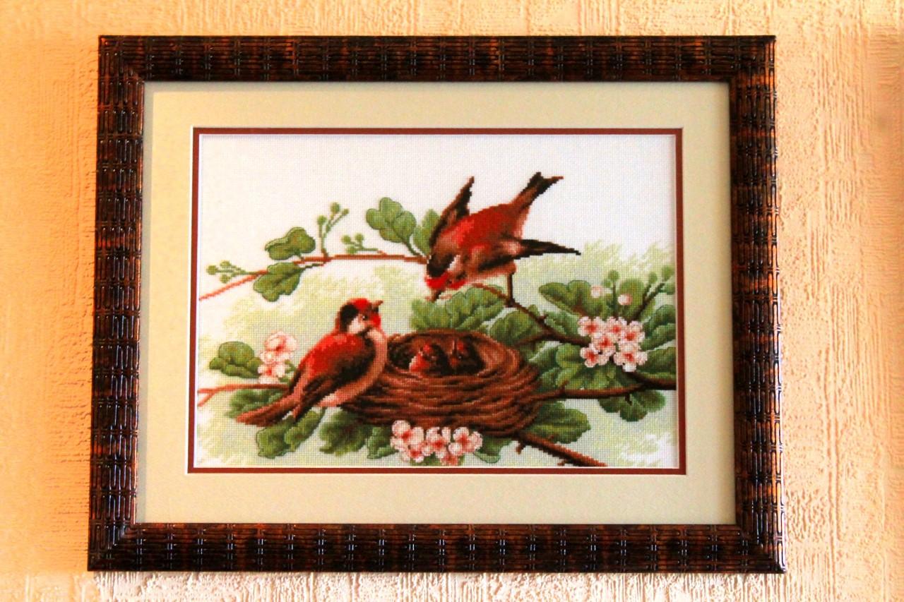 Фото вышивок крестом птиц