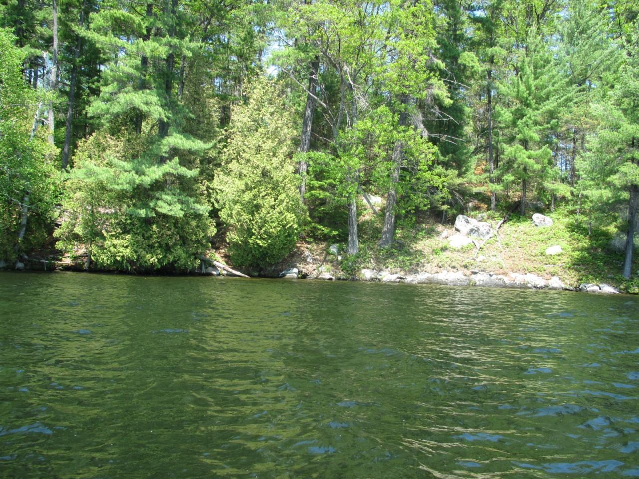 Elephant Lake, Algonquin Park, Ontario, Canada