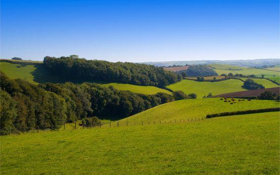 Об идее Трутнева раздавать гектары земли по всей стране.