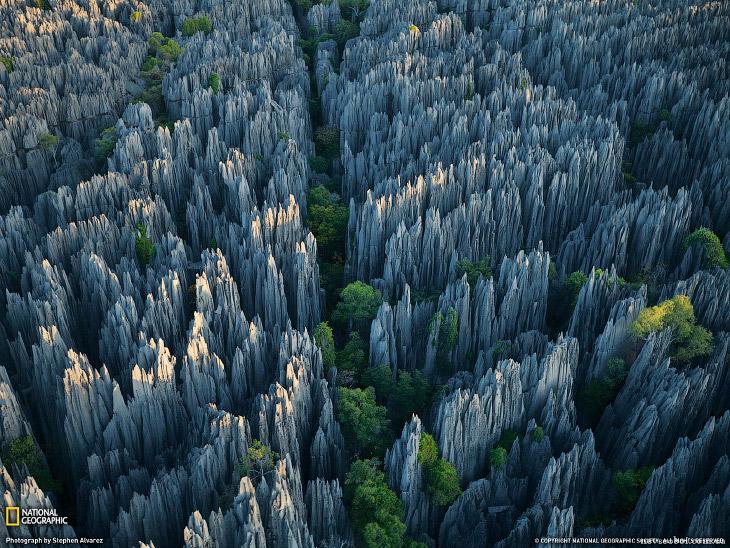 Это стоит увидеть своими глазами! Каменный лес Цинги