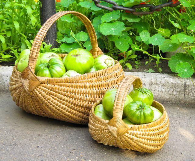Как ускорить дозревание зеленых помидоров в домашних условиях