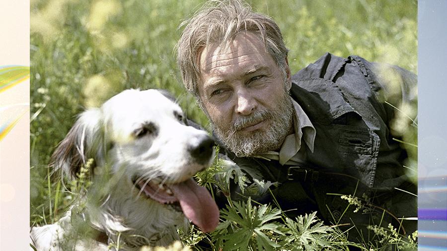 """""""Белый Бим Чёрное ухо"""" и собачья жизнь в кино"""