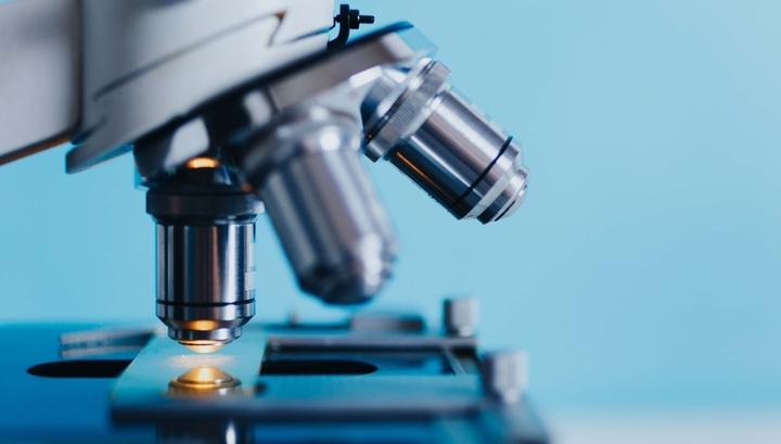 Нетипичное поведение: найден вирус, укрепляющий иммунную систему