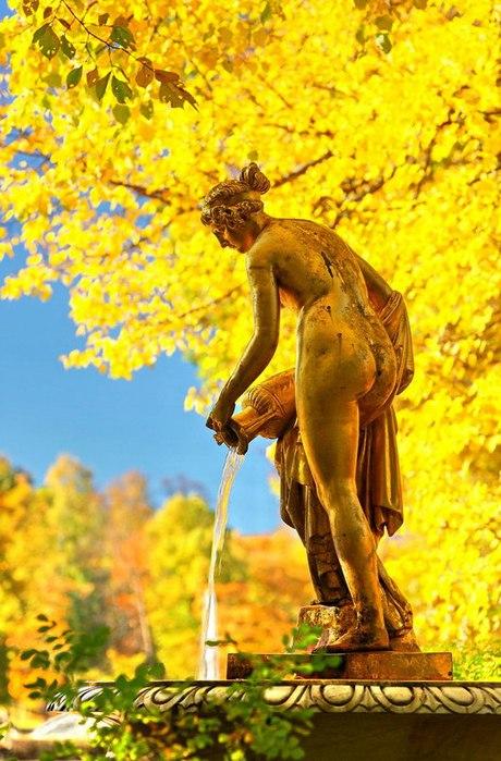 Осеннее великолепие. Петербу…