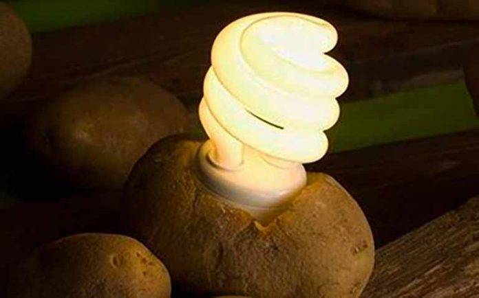 Используйте картофель, чтобы освещать свою комнату в течение более месяца
