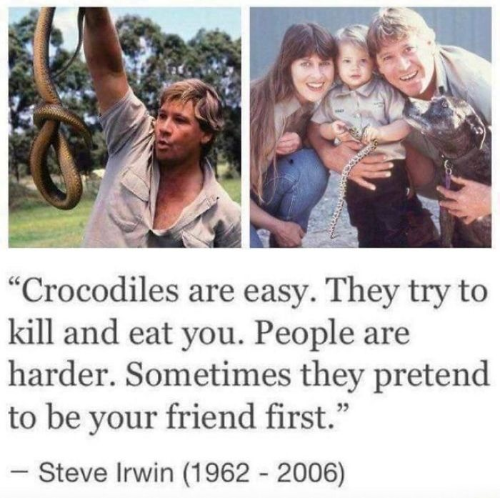 53 People Call Out PETA For Their 'Insensitive' Criticism Of Steve Irwin