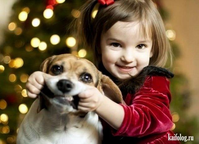 Дети и животные,